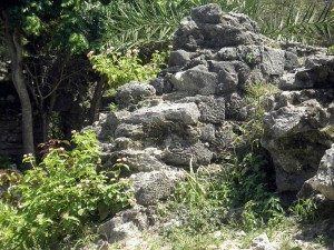 Remains of the ancient fort