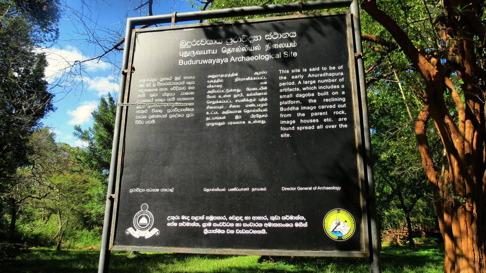 Buduruwayaya Archaeological Site - Bakamuna