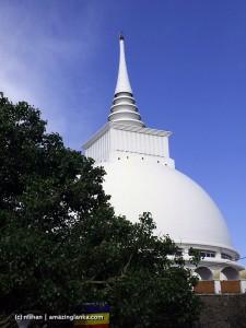Kalutara Bodhi
