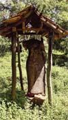 Padikemgala Raja Maha Viharaya