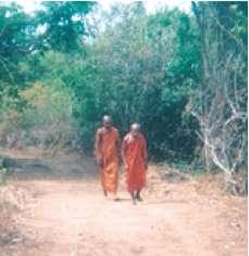 Halmillewa Chandrasara Forest Hermitage