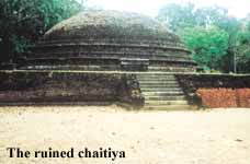 Pidurangala Rajamaha Viharaya