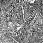 Pallemalala Prehistoric burial grounds and Habitation Floor