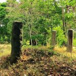Monoliths which long ago held large buildings at Wattarama Rajamaha Viharaya