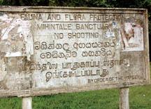 Mihintale Sanctuary