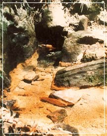 Waulpone Rock Caves