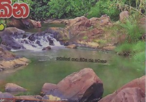 Hakgedi Ella Falls - The pool where the eel is said to live