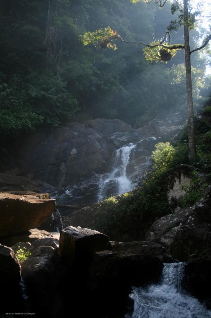 Pathan Oya Ella Falls by Ashan Geeganage