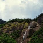 yaka hedu ella — at Sripada Temple, Adam's Peak.