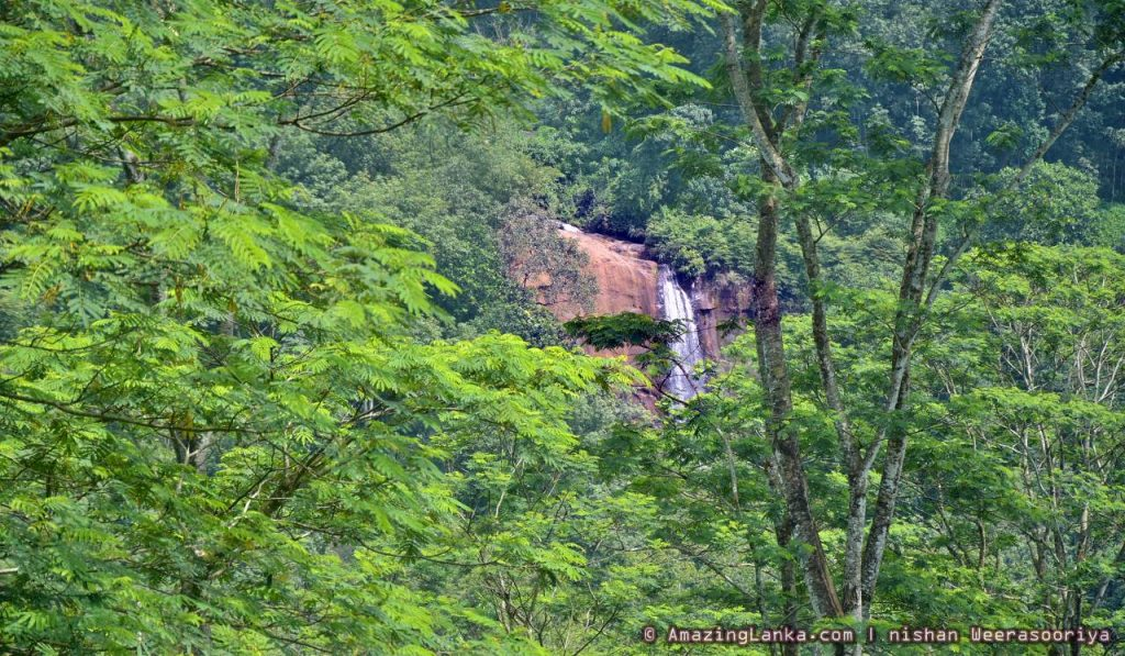 Wee Oya Ella seen from the road through the forest cover