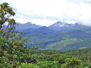 The panoramic views of the Knuckles Range