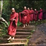 Bodhinagala forest hermitage