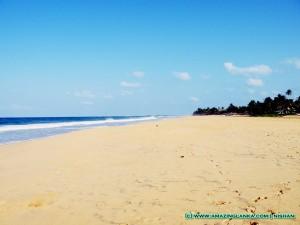 Sandy Beaches of Hikkaduwa