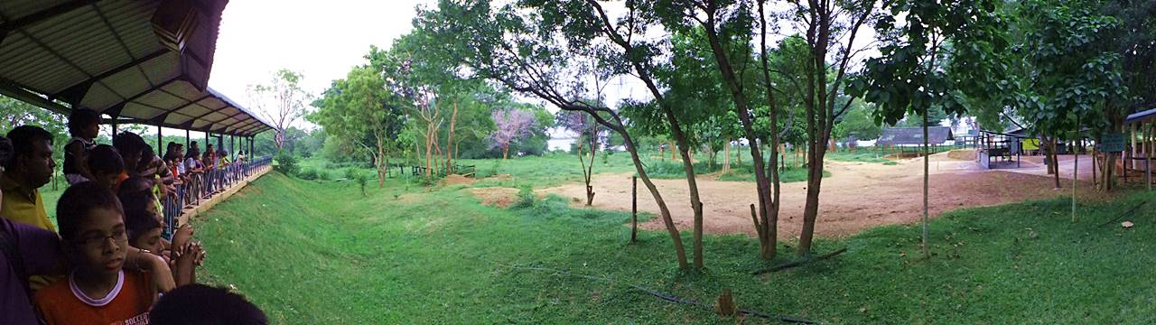Visitor area and feeding grounds at Eth Athuru Sevana