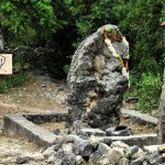 The growing rock - a place of worship for the Hindus of Delft Island in Jaffna