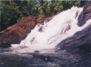 Delwala Ella Falls