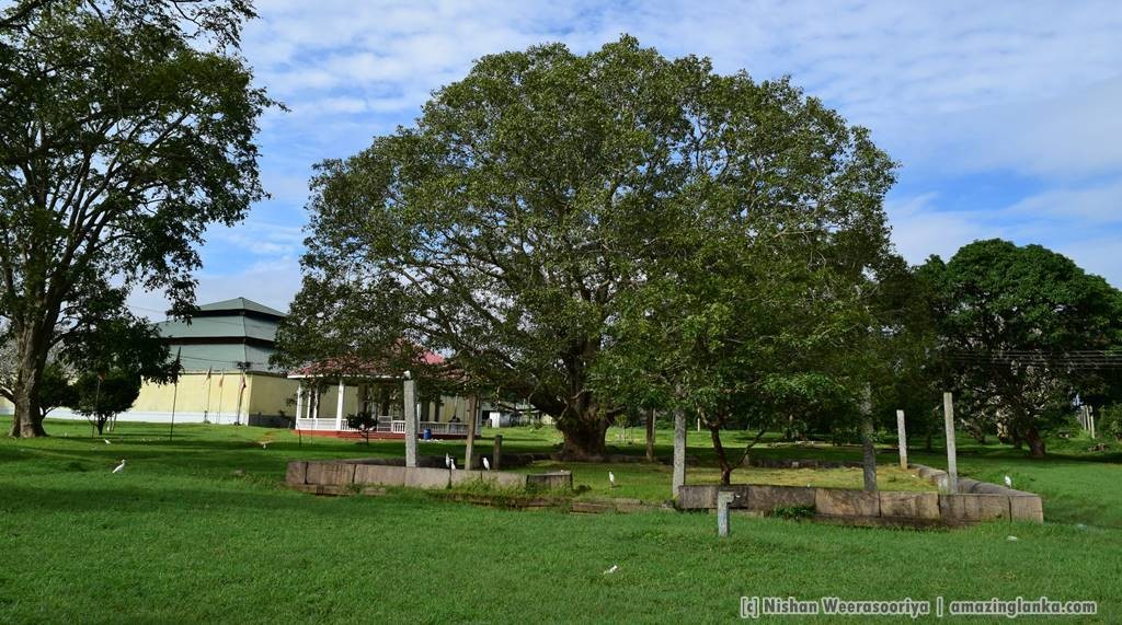 Ransimalakaya at Anuradhapura