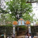 Mahasen Temple Sella Kataragama