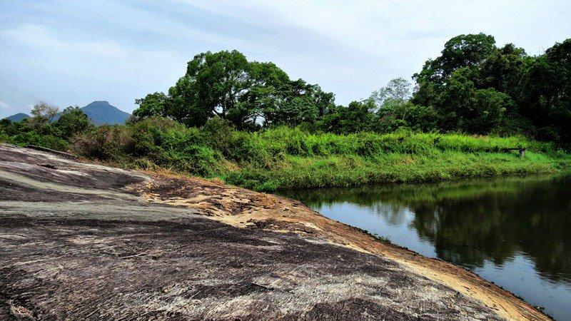 Newgala Lion Engraved Rock