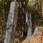 Massive granite pillars in the surrounding jungles at the Silumina Seya of Aralaganwila