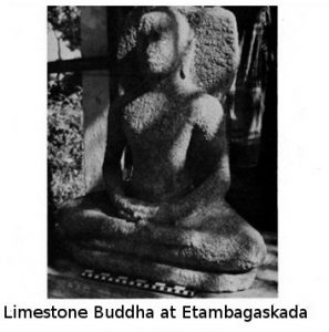 Limestone image from the 1983 report of Cyril Mathew