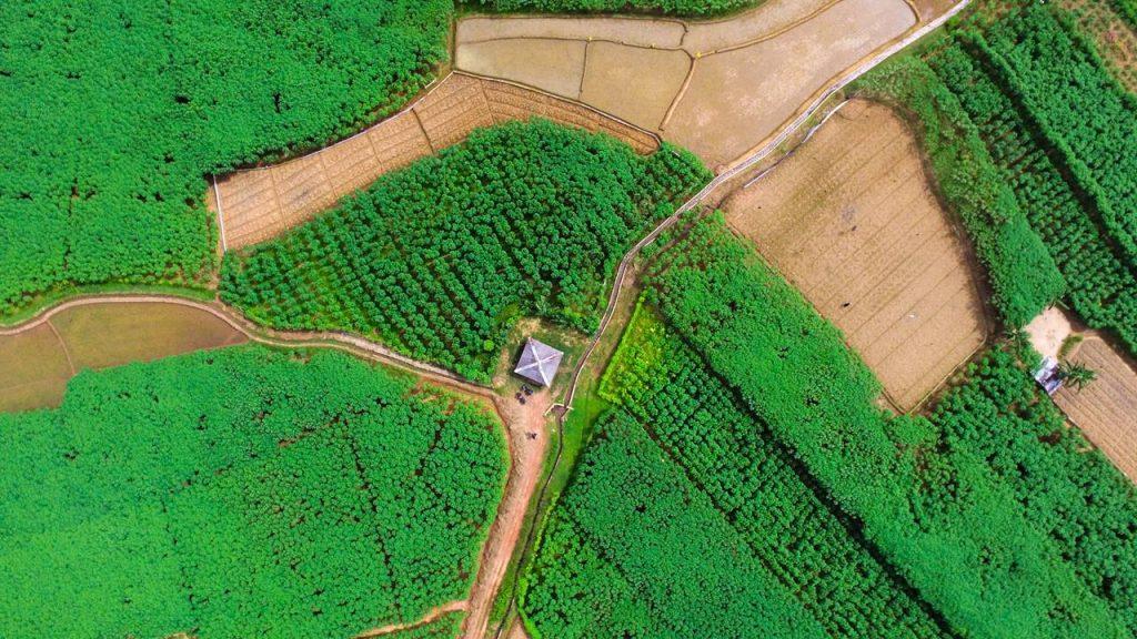 Arial view of Megoda Kalugamuwa Ambalama