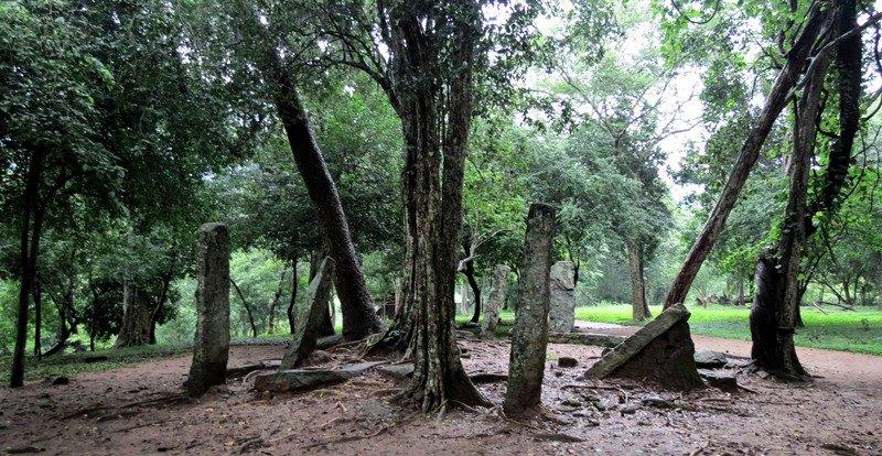 Kandurugoda Archaeological Ruins surrounded by paddyfields — in Namal Oya, Sri Lanka.