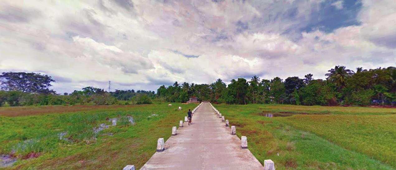 Causeway across the paddy fields at Waralanda