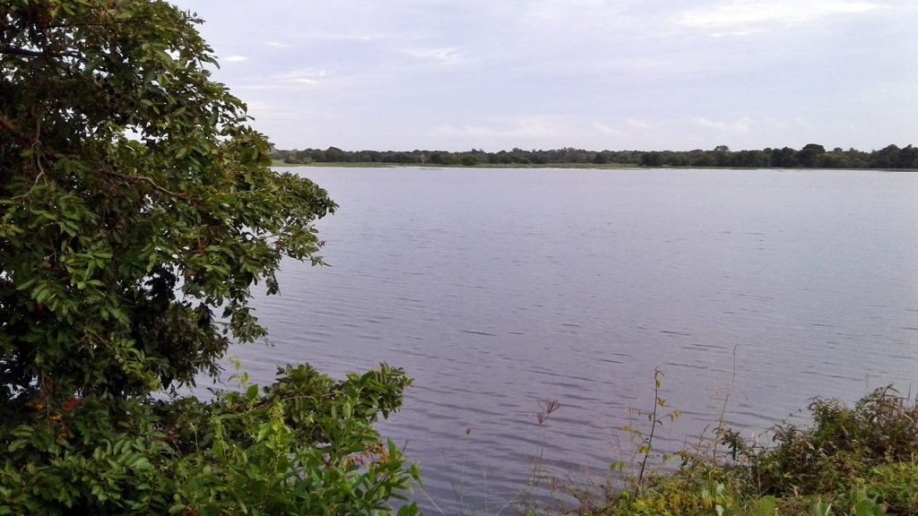 Mamaduwa Wewa (ancient reservoir) buit in the 6th Century <br> photo by : nadun chanaka