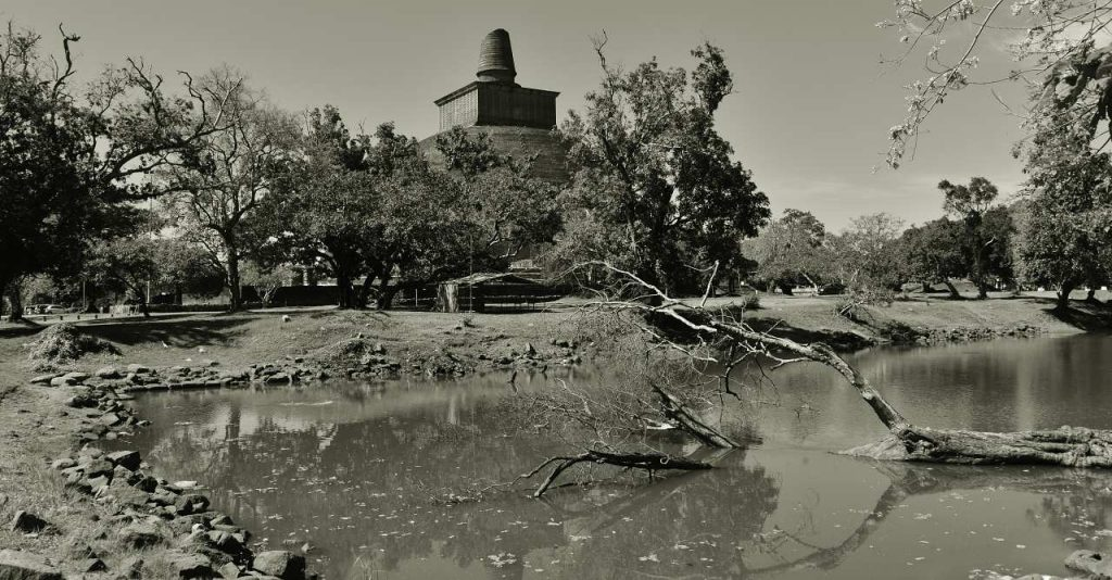 Thimbiri Pokuna in Jethawanarama Complex.
