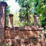 මොල්ලිගොඩ පුරාණ අම්බලම හා බෝධිය - Molligoda Ancient Ambalama and Bodhiya