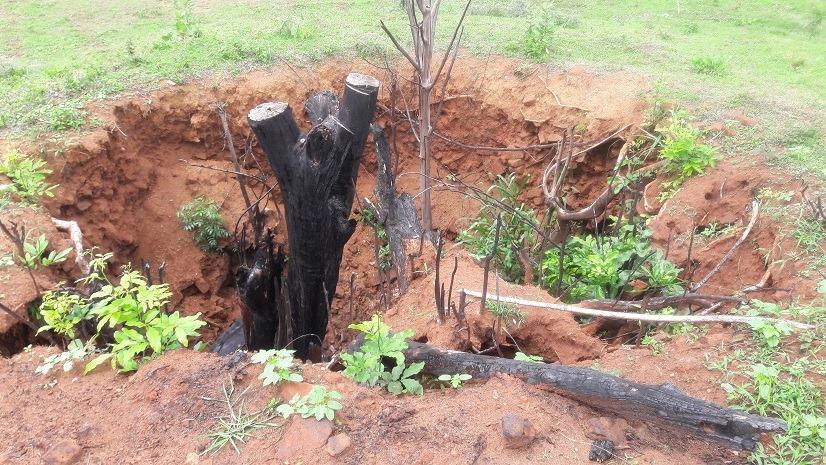 දාගැබ් හයක නටඹුන් සහිත විලංකුලම දිවුල්වැව රජමහා විහාරය - Vilankulama Divulwewa Rajamaha Viharaya Ruins