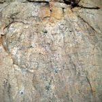 නිදන් සොයා වනසා ඇති ත්රිකුණාමලය ලිංගපුර බෞද්ධ ණටබුන් - Lingapura Buddhist Ruins in Trincomalee