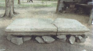 ඔඩ්ඩුසුඩාන් කච්චිලමඩු පුරාවිද්යා ස්ථානයේ මල් ආසනයක් - Kachchilamadu Archaeological Site in Mulativu