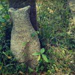 කන්තලේ ශ්රී අග්බෝ රජමහා විහාරය පුරාවිද්යා භූමිය - Kanthale Sri Agbo Rajamaha Viharaya Archaeological Site