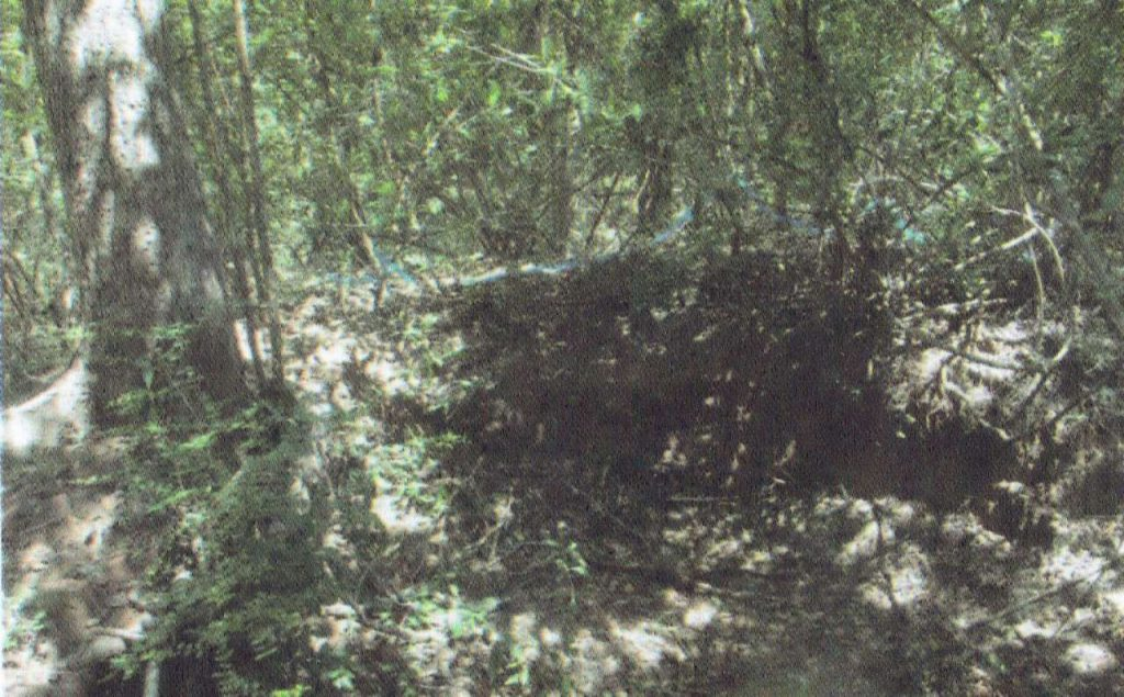 නිදන් සොරුන් විසින් විනාශ කොට ඇති ස්තූප ගොඩැල්ල - මුලතිවු සුගන්ධිපුරම් බෞද්ධ පුරාවිද්යා නටබුන් - Sugandhipuram Archaeological Ruins in Mulativu